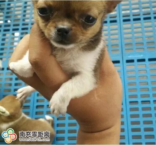 QQ鍥剧墖20170629174007.jpg