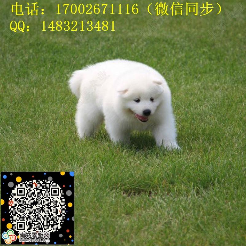 34_副本.jpg