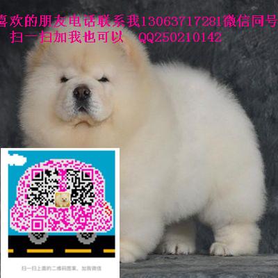 TB2y6IStXXXXXahXXXXXXXXXXXX_!!2935099061.jpg